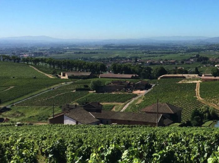 "In France's Burgundy Wine Country With ""Gutsy Women Travel"""